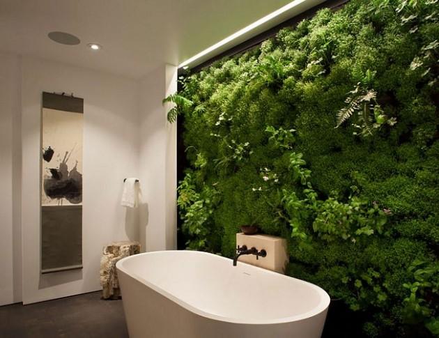 Plantando natureza no banheiro