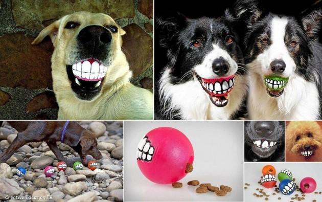 #18 -  Bolinhas de sorriso para os cães