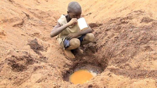 projeto zambia -