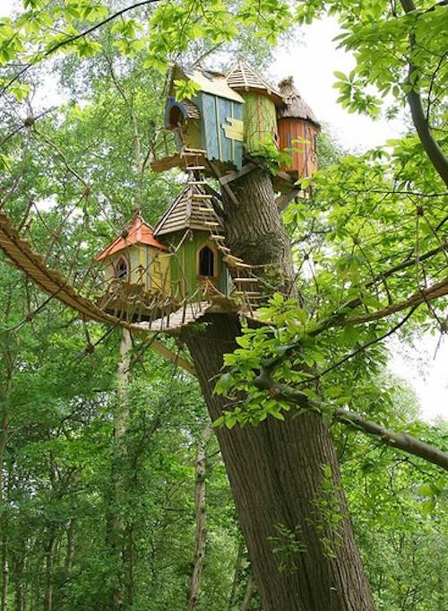 Casa da árvore, Virginia