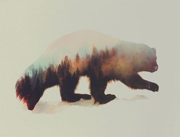 Fotos-de-dupla-exposição-animais-e-floresta-15