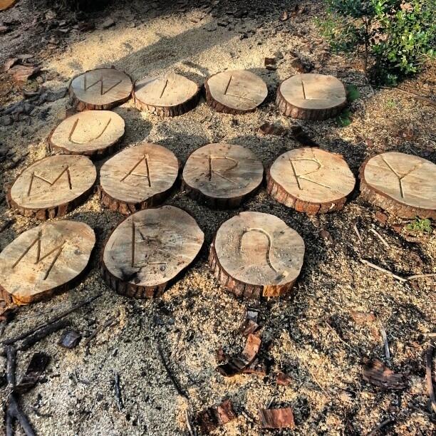 Ou usar um pouco da natureza. ( É claro que você não vai arrancar árvores só para isso :p )
