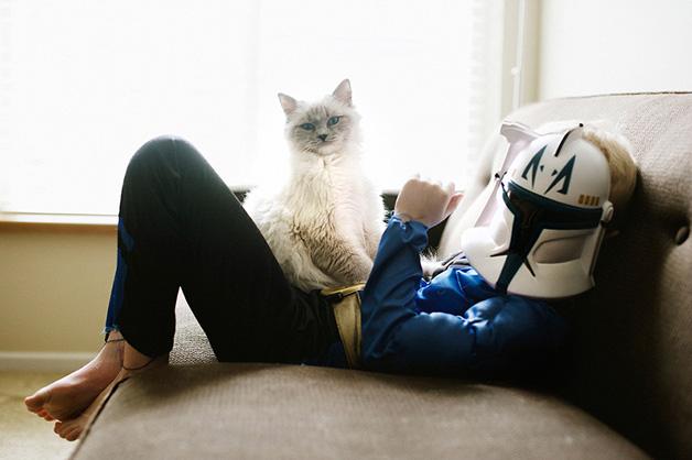 gatos-filhos