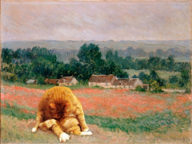monet-stog-cat-sm-637x479
