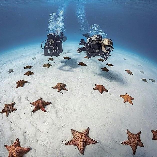 #20- Mergulho em Bahamas