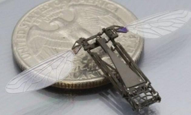 38 objetos minúsculos que você não vai acreditar que existam 17