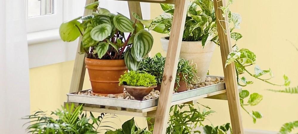 26 inspira es criativas de decora o para quem ama flores for Plantas hermosas para interiores