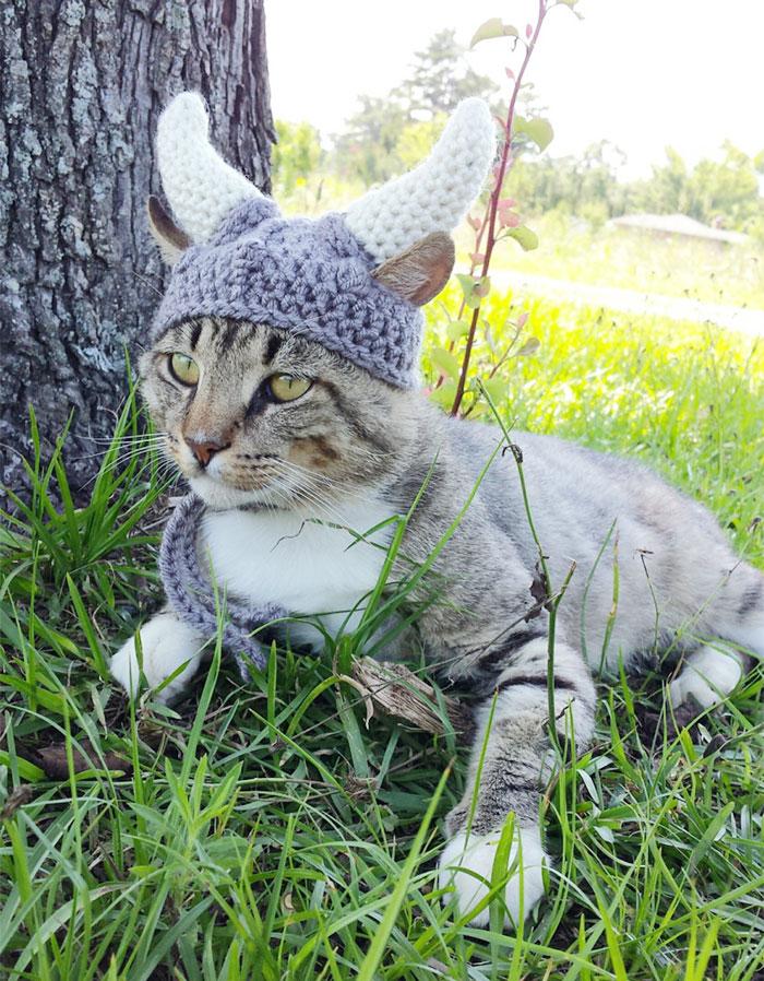 crochet-handmade-hats-pets-iheartneedlework-1__700