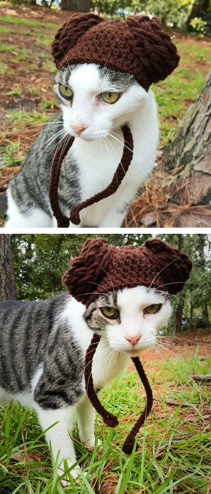 crochet-handmade-hats-pets-iheartneedlework-3__700