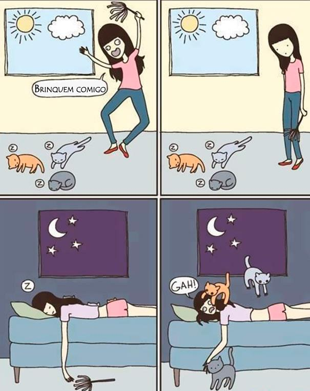 23 Imagens pra você tentar entender a lógica dos gatos. (14)