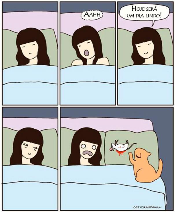 23 Imagens pra você tentar entender a lógica dos gatos. (15)