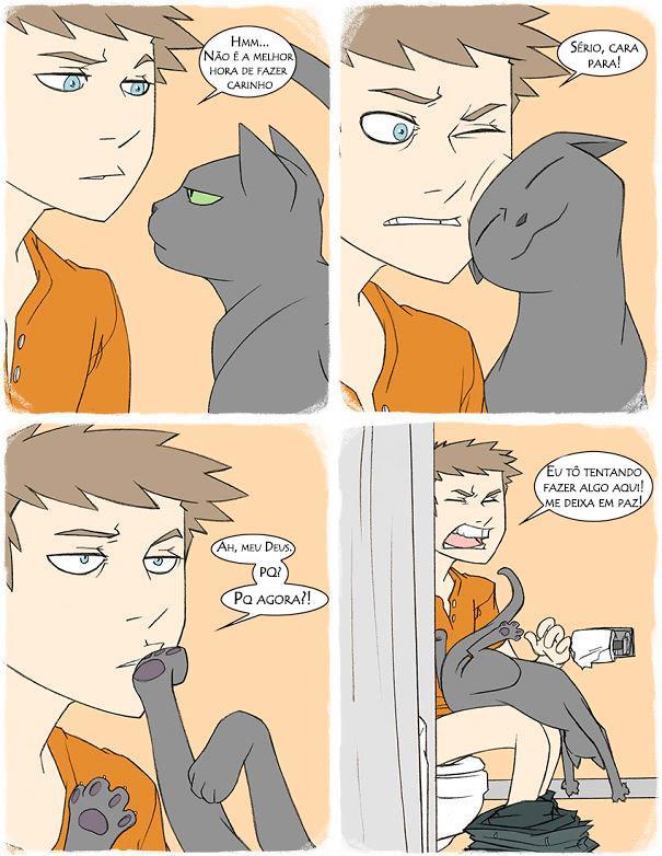 23 Imagens pra você tentar entender a lógica dos gatos. (5)