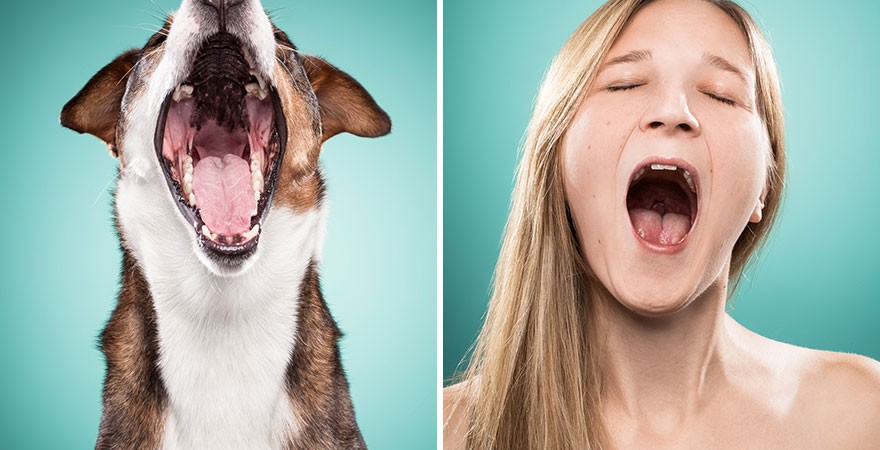 I-Am-Photographing-Dog-Owners-That-Mimic-Their-Dogs-Facial-Expressions15__880