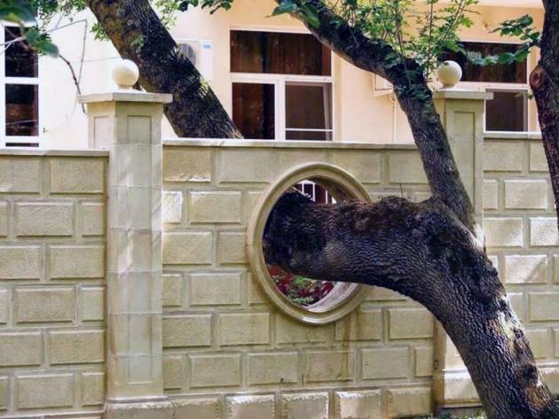 arquitetura_ao_redor_arvores_09