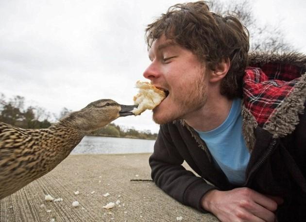Depois que você fica no ambiente do bicho por um tempo, geralmente o animal vai até você.
