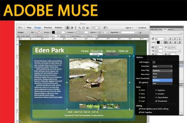 Curso de Adobe Muse