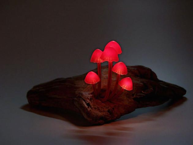 yukio-takano-led-magic-mushrooms (3)