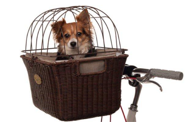 cesta de bike especial para cães e gatos