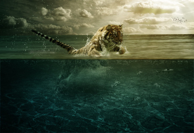 tiger_leap_in_the_water_by_pshoudini-d4rk2b7