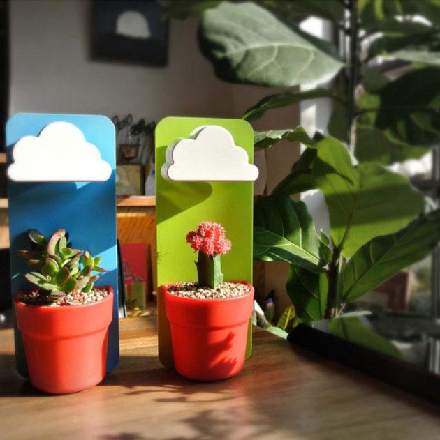 10 Vaso Flores na Chuva