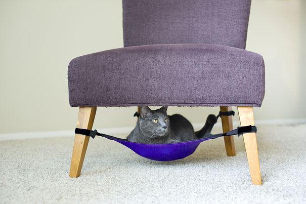 #8 - Cama de gatinho na cadeira.