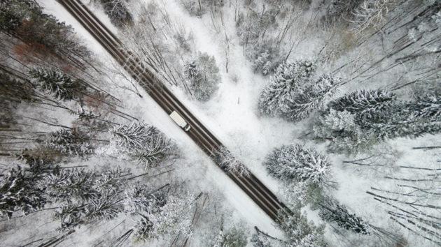 Floresta no gelo em Vilnius - Lituânia. Foto por: Karolis Janulis