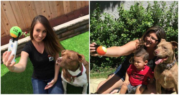 Registrar Selfie com os cães nunca foi tão fácil.
