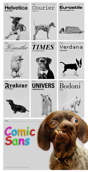 #13 - E se as fontes fossem cães?