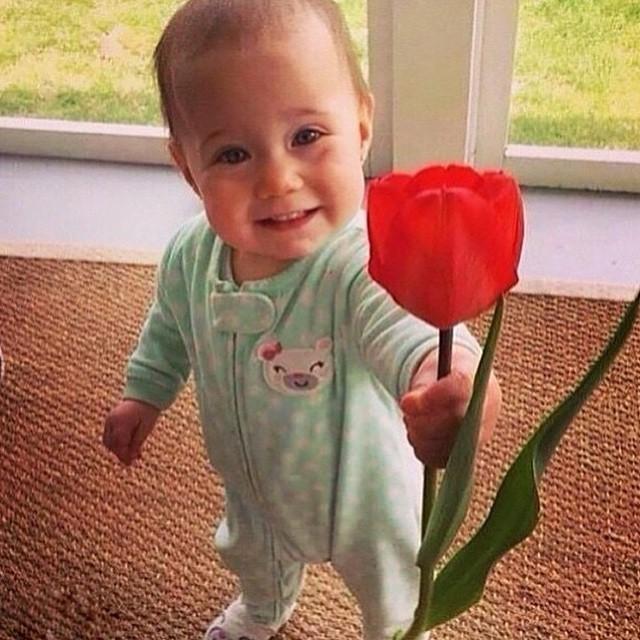 #3 - Uma flor pra alegrar o seu dia.