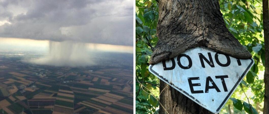 20 imagens que mostram que a natureza não está nem aí para os seres humanos
