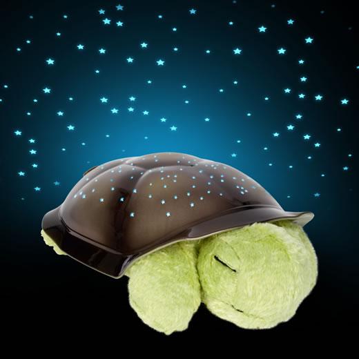 twilight-turtle