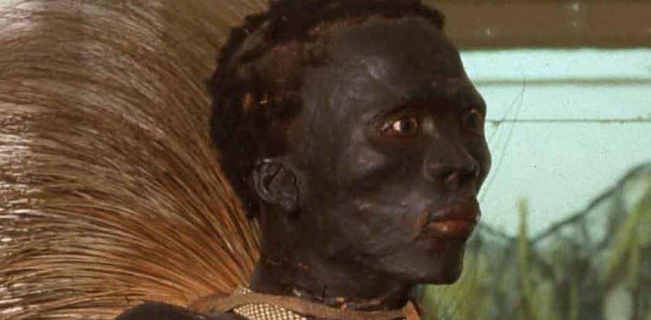 africano exposto capa