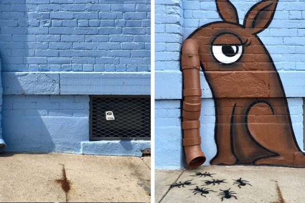 antes e depois capa