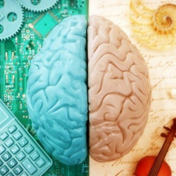 atividades cerebrais capa