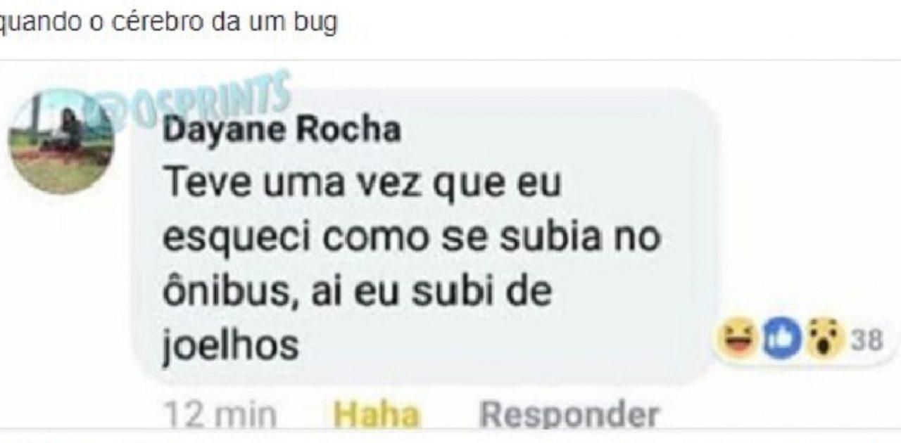 bug no cérebro capa