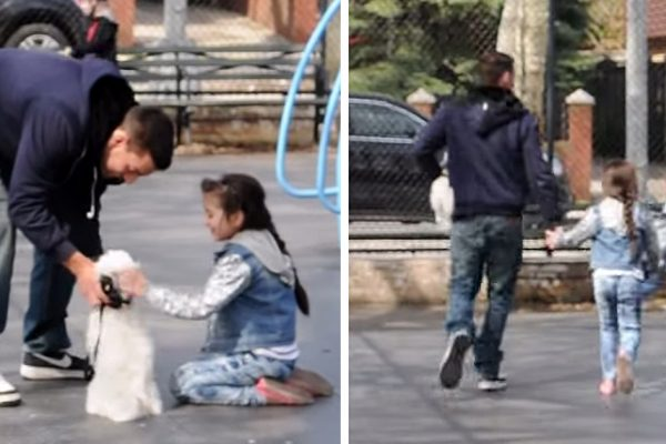child-abduction-social-experiment-video-joey-salads-fb