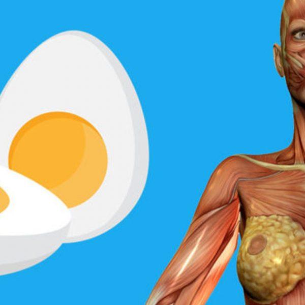 comer ovos capa