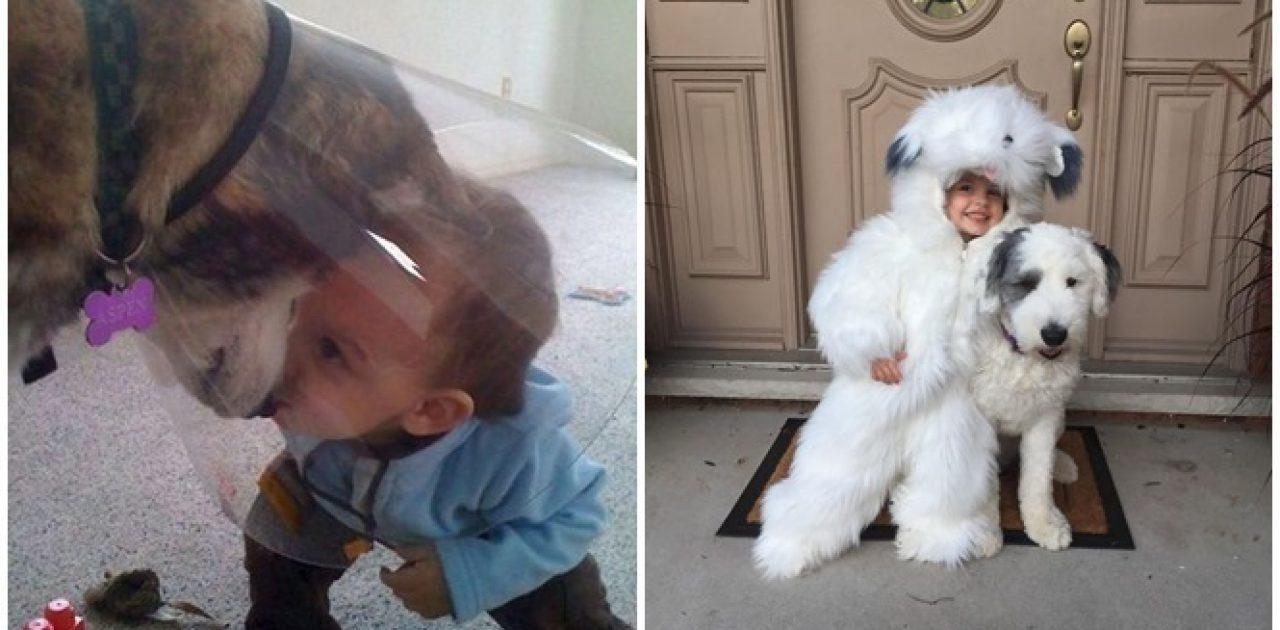 criança e cão capa