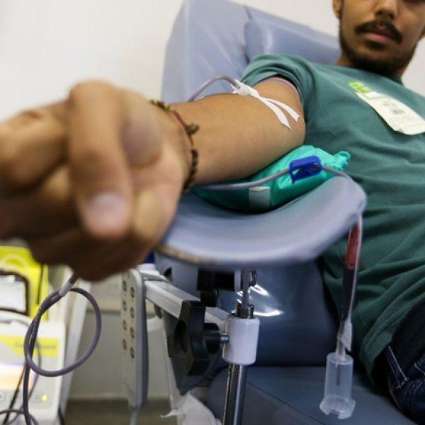 doar sangue 02