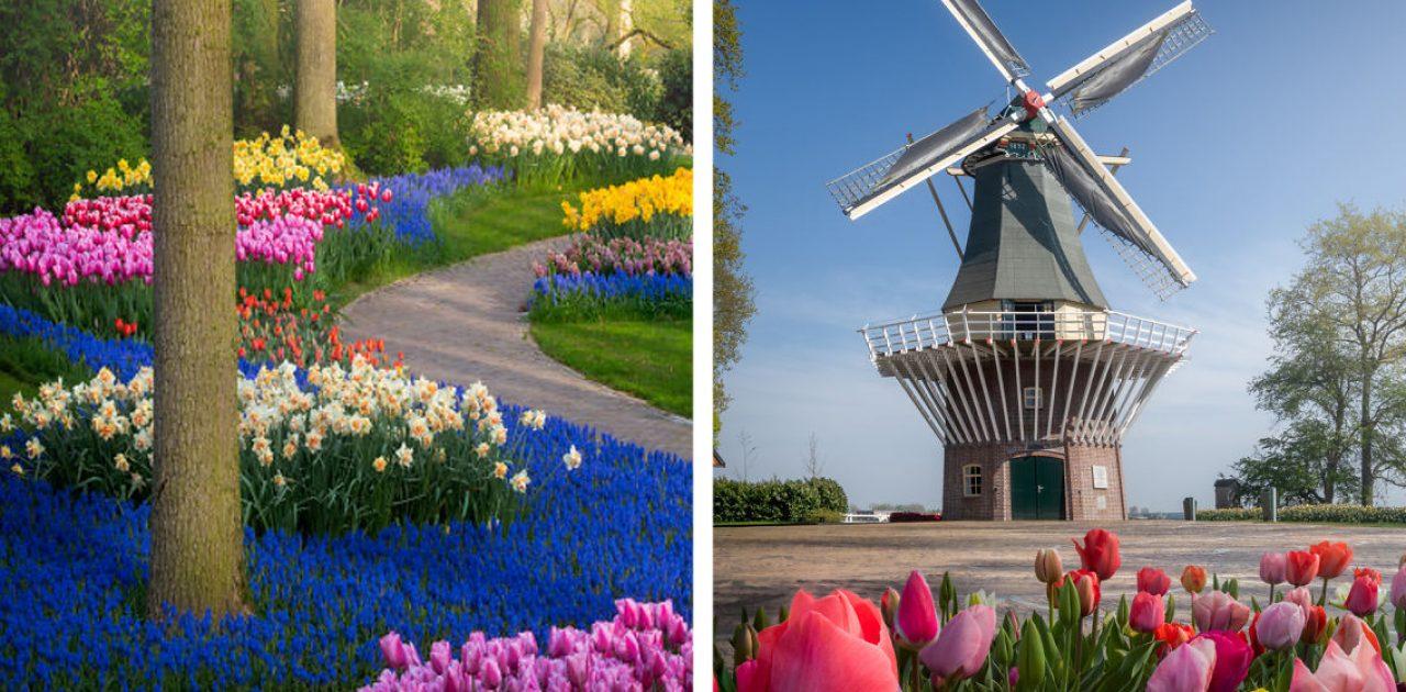 jardim holandês capa