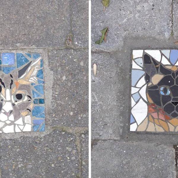 mosaicos capa
