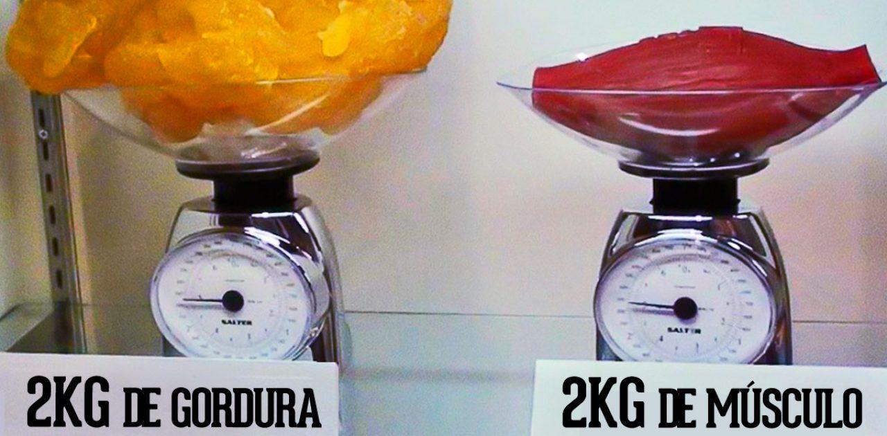 musculo-e-gordura