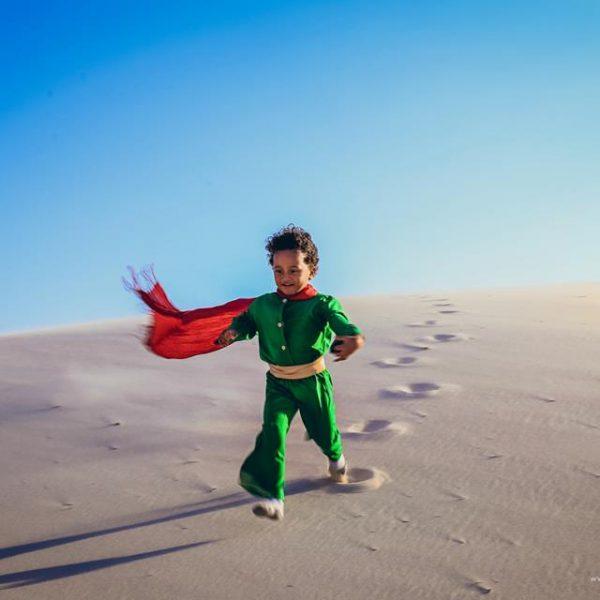 pequeno príncipe brasileiro capa