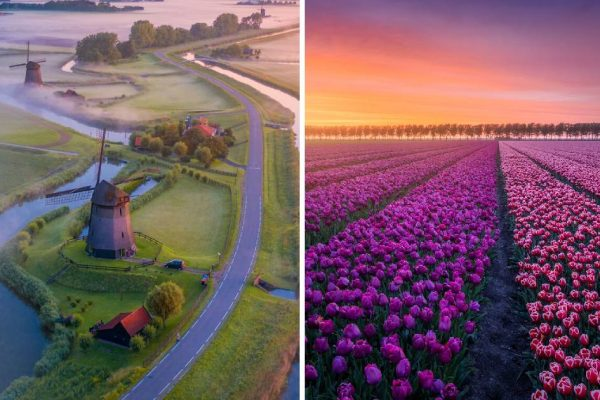 primavera na Holanda capa
