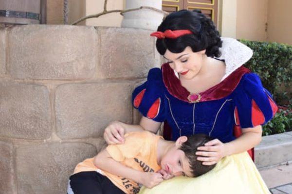 princesa e o autismo capa