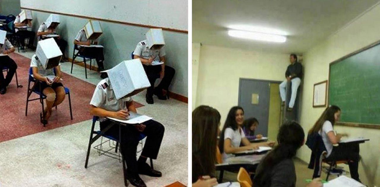 professores espertos capa