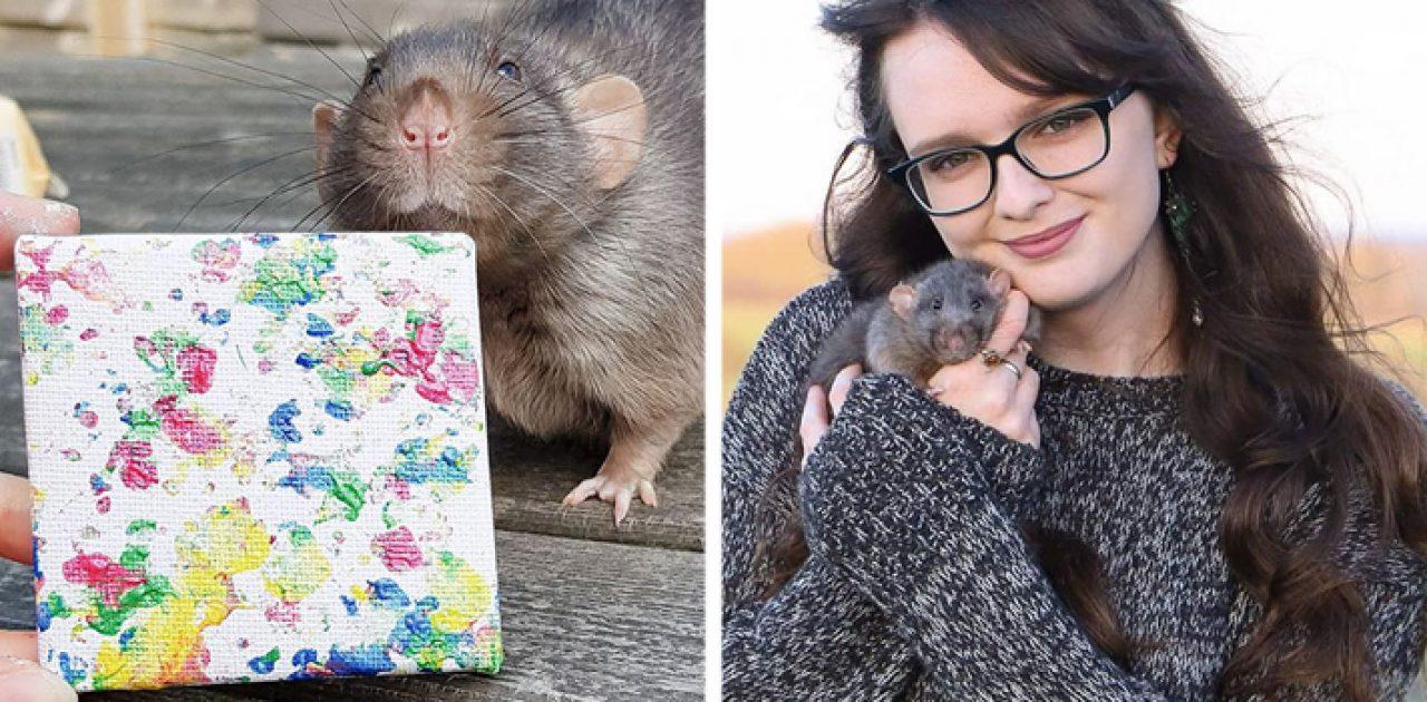 ratinhos pintores capa