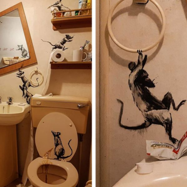 ratos no banheiro capa
